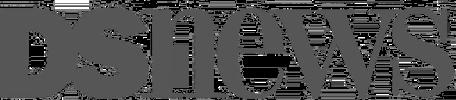 logo: dsnews